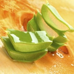 Aloe Vera, benefit from the inside out