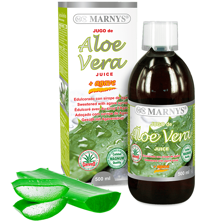 how to prepare aloe vera to drink