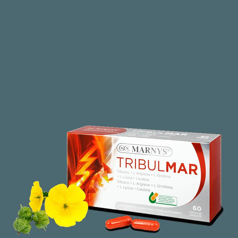MN479 - Tribulmar