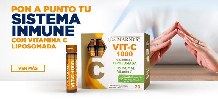 Pon a punto tu Sistema Inmune