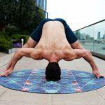 Was passiert, wenn ein Muskel 'trainiert' und dann wieder 'abtrainiert' wird?