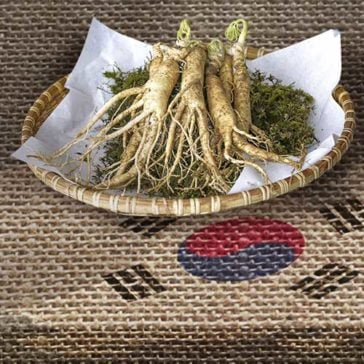 Ginseng: Restores and enhances your well-being