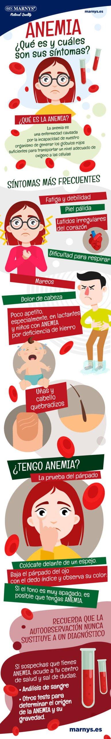 Infografía sobre la anemia, causas, tipos y cómo combatirla y prevenirla