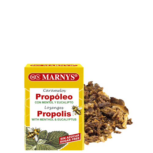 MN638 - Sugar-Free Propolis Lozenges with Menthol and Eucalyptus