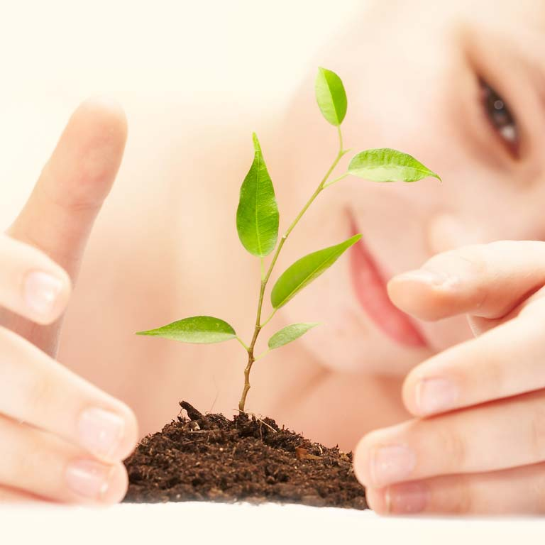 Tipps & Tricks um daheim ökologischer zu sein.
