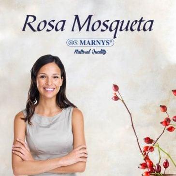 Rosa Mosqueta, el Aceite de la Juventud